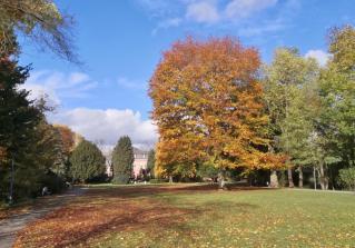 Blick durch den Park auf die Rückseite des ehemaligen Marstalls