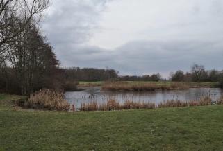 Der Golfplatz vor den Toren von Büttgen: Im Winterschlaf und corona-bedingt verwaist