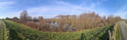 "Panoramabild vom Biener Altrhein, dem ""Millinger und Hurler Meer"""