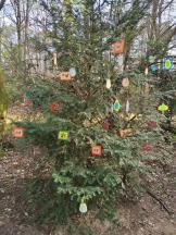 Mitten im Wald hat jemand einen Baum österlich geschmückt
