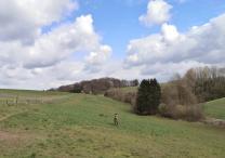 Landschaft am Schwarzbach unterhalb des Schellbergs