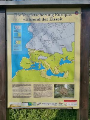 Ausdehnung des Eispanzers in der letzten Eiszeit über Europa