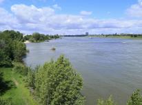 Blick Rheinabwärts in Richtung Neuss