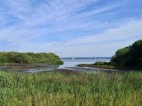 Eine von wenigen Stellen, wo man über die Naturschutzzone im Uferbereich direkt auf den See blicken kann