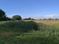 Landschaft rund um den See