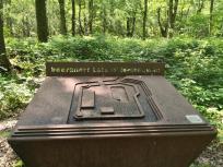 Erinnerung an eine mittelalterliche Schanze im Wald