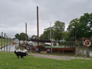 Das Museumsschiff Hanni im Yachthafen am Abser Sieltief und ein neugieriges Berne Sennenhund, der uns folgt