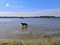 Doxi testet die Wasserqualität des Lauwersmeers