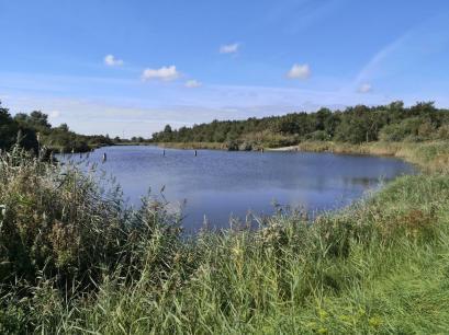 Die Landschaft ist mit zahlreichen Wasseflächen durchsetzt