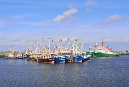 Schfiffe im Fischereihafen von Lauwersoog