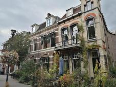 Hübsch begrünte Stadthäuser an der Spoelstraat