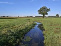 Landschaft an der Willicher Fleuth