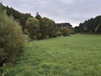 Lieblicher Talgrund am Hosenbach