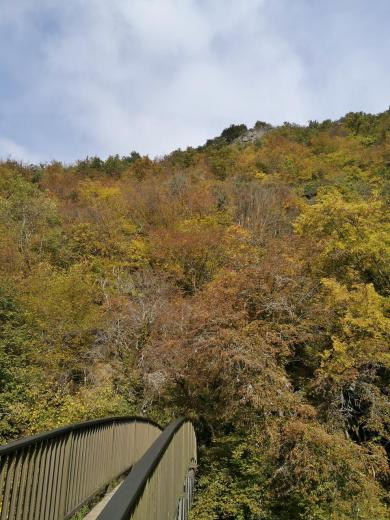 Blick von der kleinen Nahebrücke an der Mühle hinauf zur Kanzel, wo wir vorhin noch standen