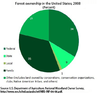 Careers In Sustainable Forestry U S Bureau Of Labor Statistics