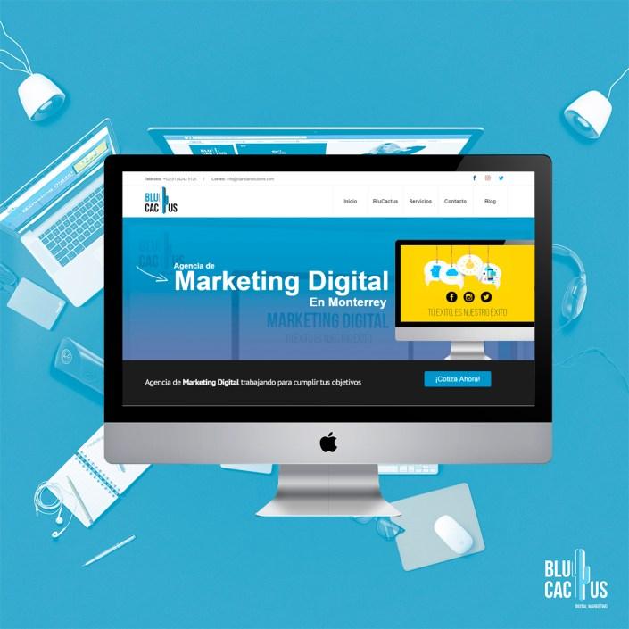 BluCactus Agencia de Diseño de páginas web - Blu Cactus
