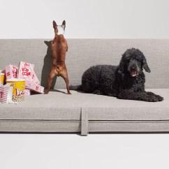 Sofa Sleeper San Francisco Spiers Thataway - Blu Dot