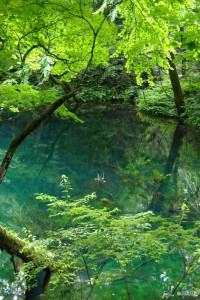 Aoike is most beautiful lake in Juniko. © Yasufumi Nishi/© JNTO