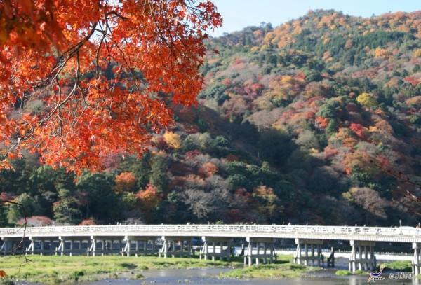 Autumn in Arashiyama is breathtaking. ©Akira Okada/©JNTO
