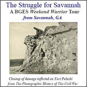 Teh Defense of Savannah