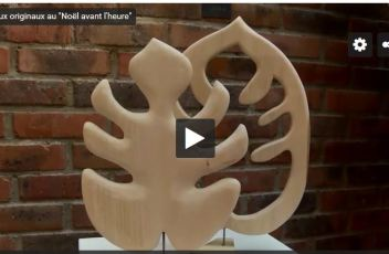bluebaobab-philodendron-sculpture-CMA95-reportage