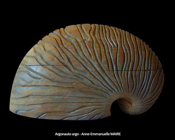 sculpture-bois-argonauta-argo-1-anne-emmanuelle-maire