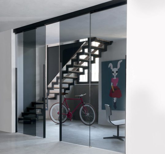 Sleek Partition Door system