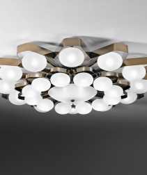 Ceiling Light with satin glass shades