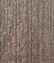 Bronze textured Wall Finishing effect