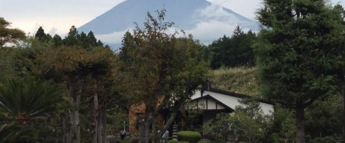 Photos from the Foot of Mt. Fuji