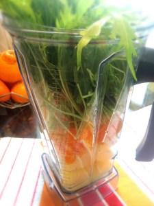 2.生姜、フルーツ、水菜、水をミキサーに入れて。高速で滑らかになるまで混ざて。