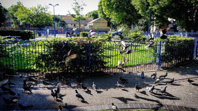 Blue Bermondsey Parks