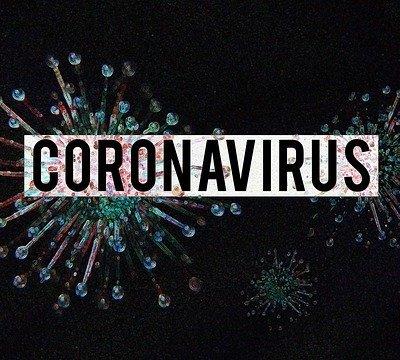 Coronavirus-Image-by-Olga-Lionart-from-Pixabay