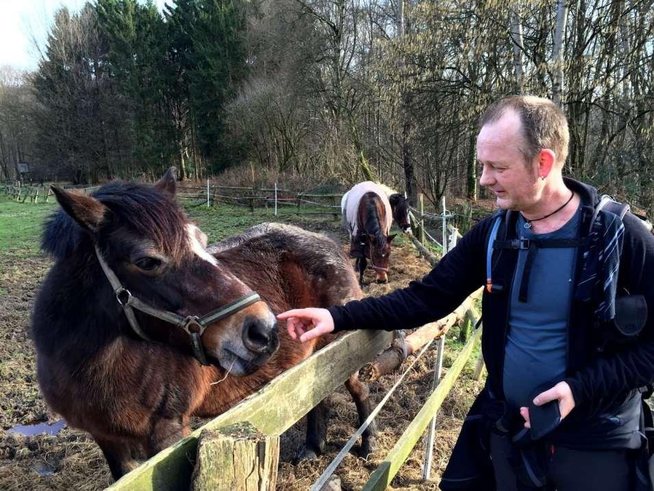 Marten makes new friends