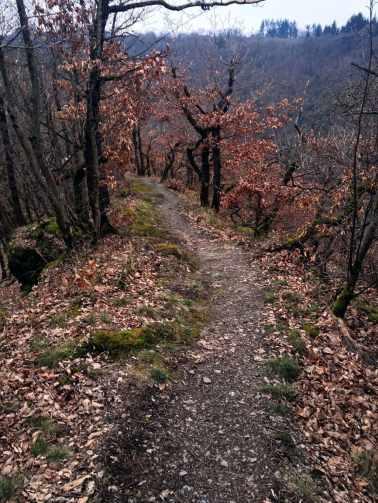 Am Berg entlang