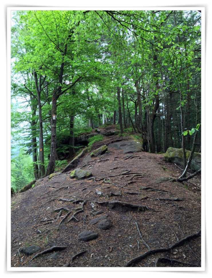 Ein weg auf dem Fels