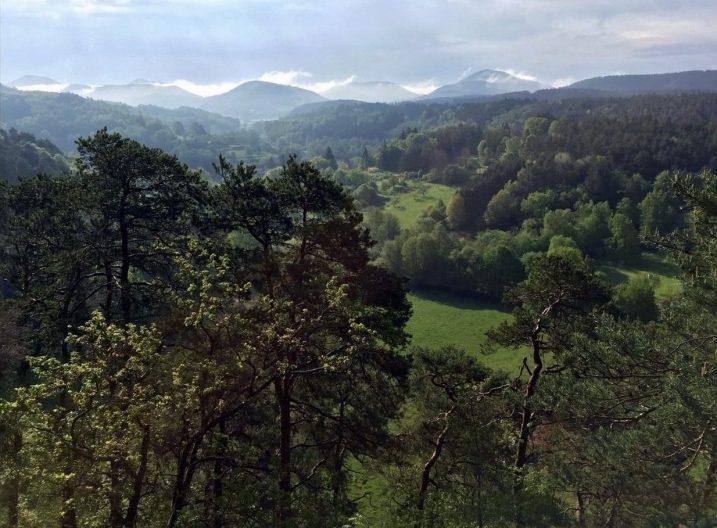 Ausblick vom Dahner Felsenpfad