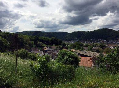 Ausblick auf Rheinbrohl