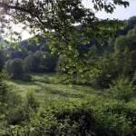 Wanderung bei Rheinbrohl – Der Rheinsteig und darum herum