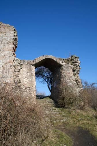 Burgruine Frauenberg