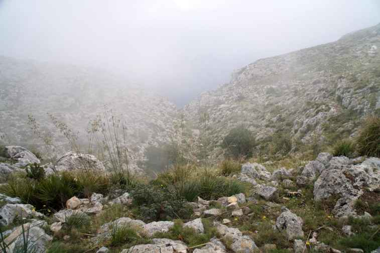 GR 221 Sant Elm - Ses Fontanelles_103