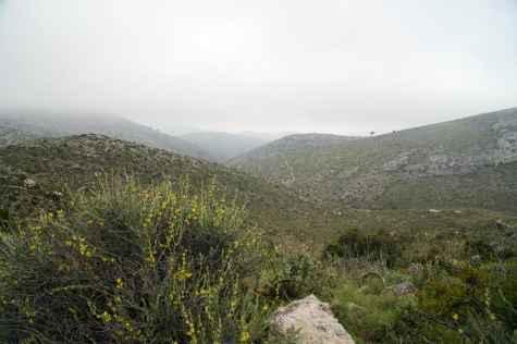 GR 221 Sant Elm - Ses Fontanelles_130