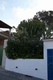 GR 221 Sant Elm - Ses Fontanelles_4