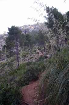 GR 221 Sant Elm - Ses Fontanelles_42