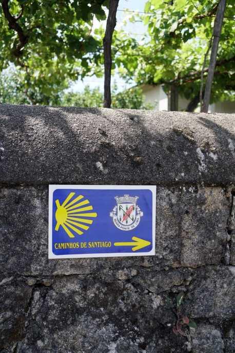 Camino Português DSC01527