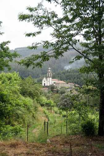 Camino Português DSC01589