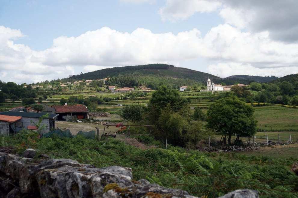 Camino Português DSC01610