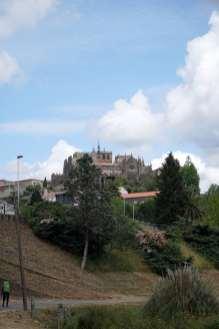 Camino Português DSC01708