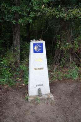 Camino Português DSC01757