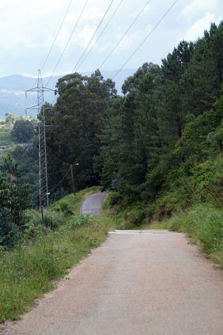 Camino Português DSC01826